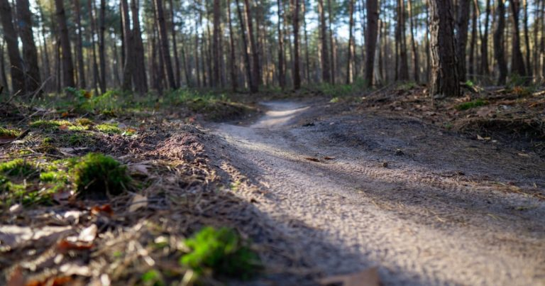 Mountainbike route Leusden in Den Treek